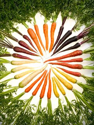 Gulerødder-01-300x400-web