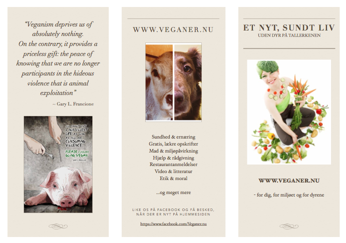 Klik for at downloade brochuren (pdf)