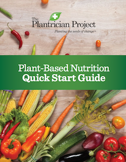 Plant-Based Nutrition Quick Start Guide-01-web
