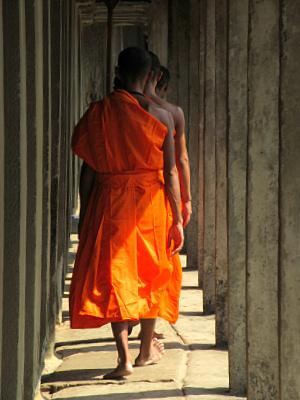 Munke på rad og række i Angkor Wat