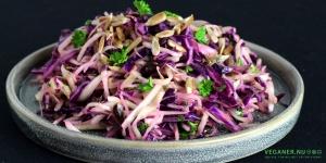 Frisk kålsalat med ristede solsikkekerner, tranebær og vinaigrette