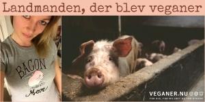 Veganer.nu-Stine