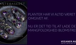 Veganer.nu-plantebaseret gourmet