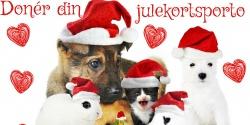 Doner din julekortsporto