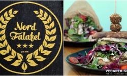 Veganer.nu-nord-falafel